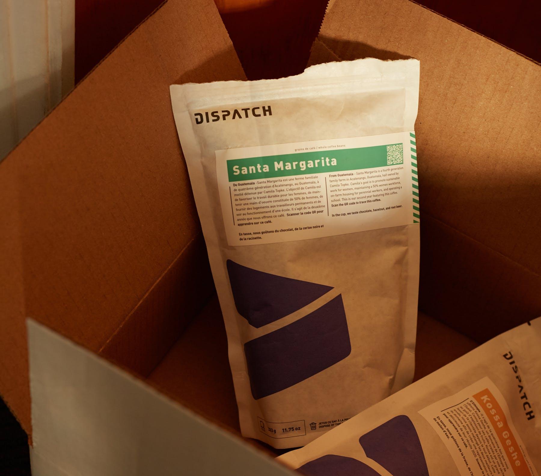 Dispatch 01