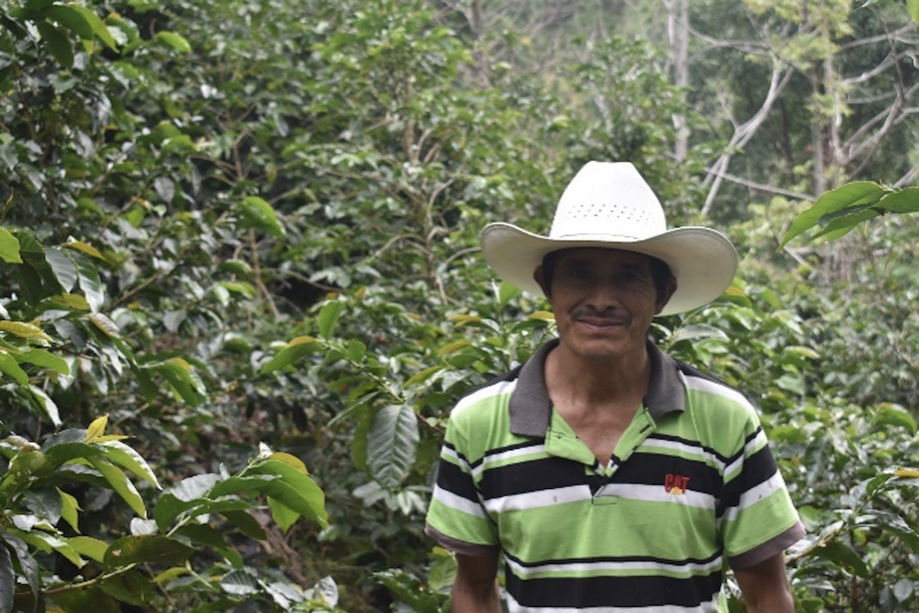 Jose Efrain